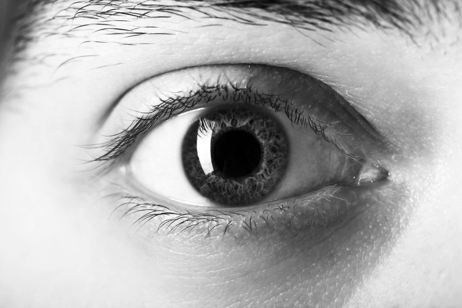 Wet macular degeneration - Low Vision Specialist Blog